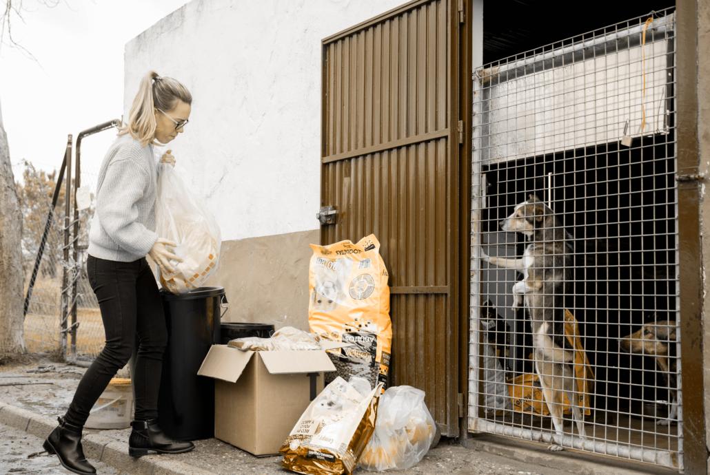Donación perrera